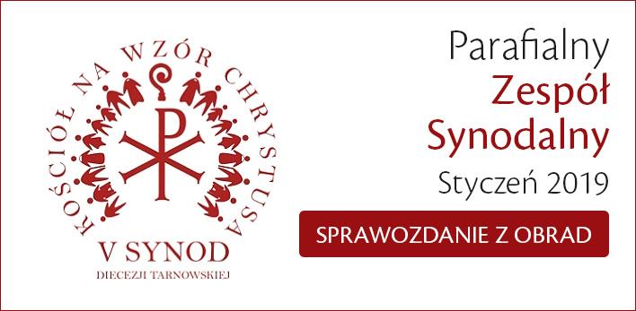 Parafialny Zespół Synodalny - styczeń 2019