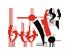 BWI - Brzeska Witryna Internetowa